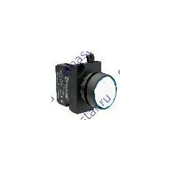 EMAS - Кнопка с подсветкой-cветодиод белая CP150DB (1HO)